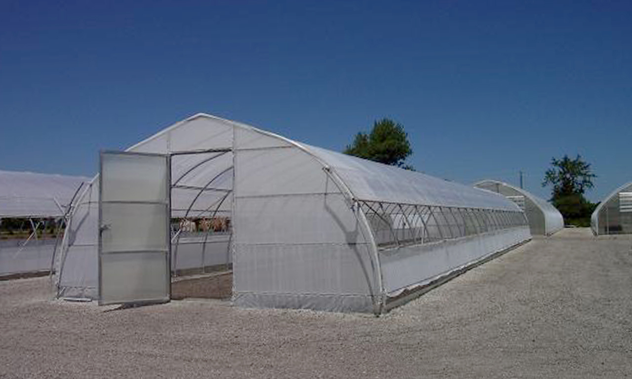 Cold Frame Greenhouses